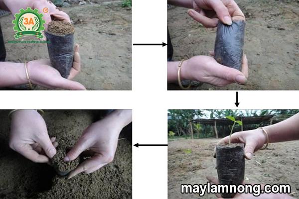 bầu đất, cách làm bầu đất, bầu ươm cây giống, cách trộn đất trồng cây, tỷ lệ trộn đất trồng cây