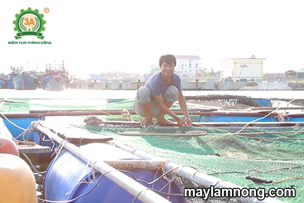 nuôi cá lồng, cá lồng, nuôi cá lồng bè, kỹ thuật nuôi cá lồng, nuôi cá bè trên sông
